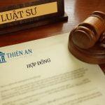 Tranh chấp hợp đồng thương mại – Lãi chậm thanh toán và Án lệ 09 (Kỳ 1)
